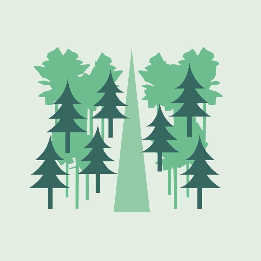 Illustration skogsbilväg