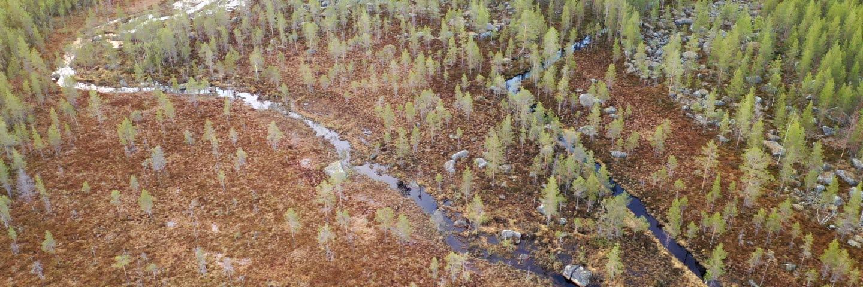 Öppnad bäckfåra i Västerbotten