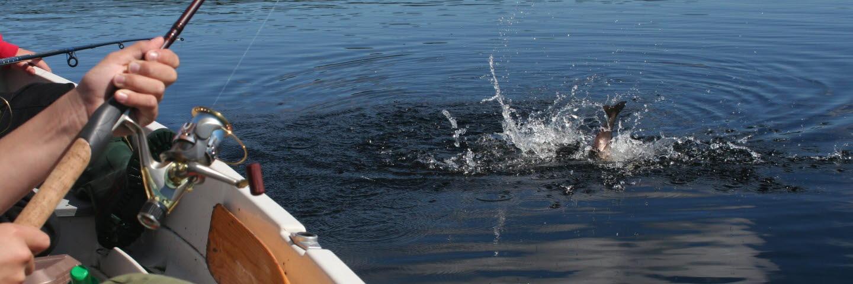 Fiske från båt