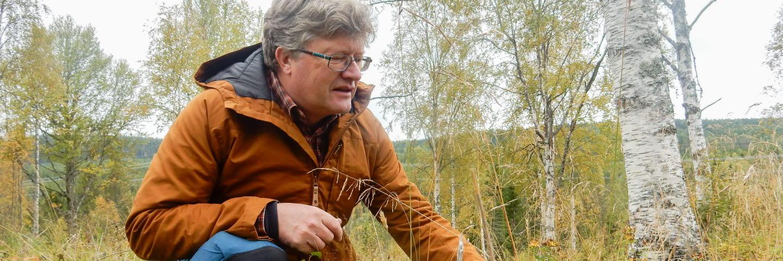 Håkan Blomqvist, naturvårdsspecialist, SCA Skog. Bild till artikel i SCA Inside om fjärilar.