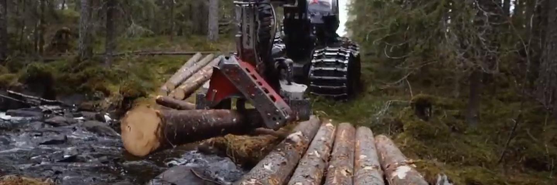 Brobygge vid slutavverkning
