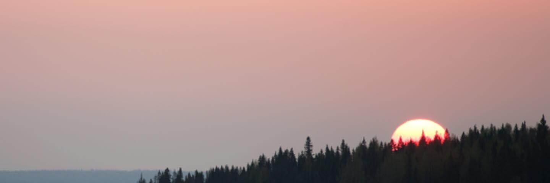 Solnedgång i skogen NorderåsenSunset in the forest Norderåsen