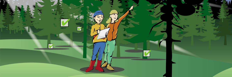 Illustration Checka Skogen