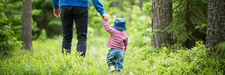 Förälder går med litet barn i skogenParent walking with small child in the forest