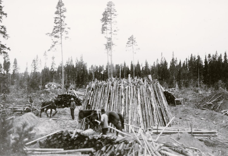 Galtström, kolmila