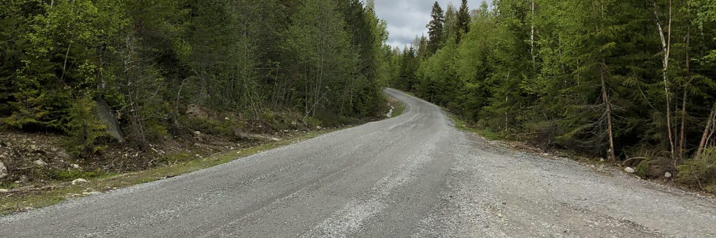 Skogsbilväg byggd med aska från Ortviken, Medelpad