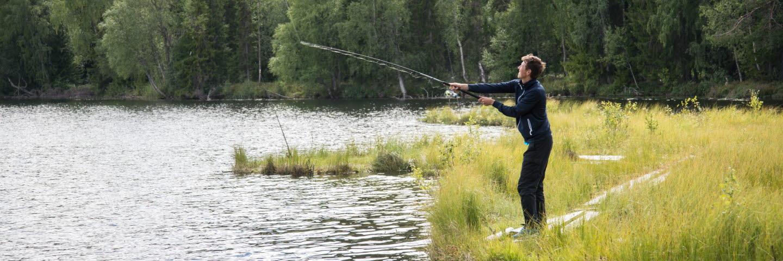 Niklas Sundberg, Medelpads skogsförvaltning. Lögdö Wild. Lögdö vildmark.