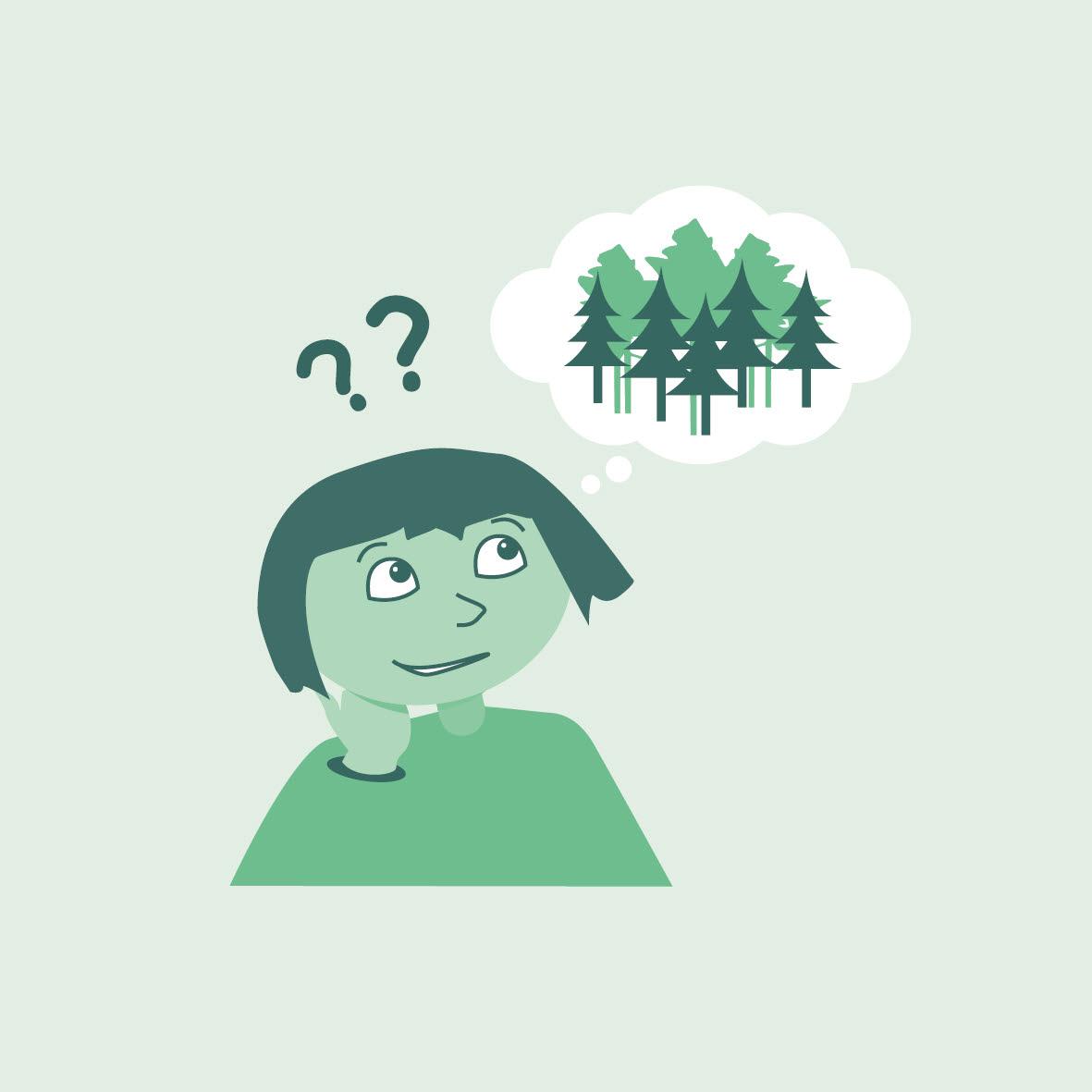 Illustration skogsfunderingar