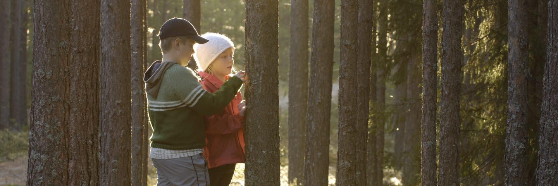 Pojke och flicka vid trädstam i skogen. Boy and girl standing by tree in the forest